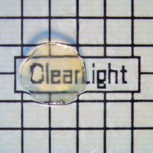 Cleared Tissue Sample from ClearLight Bio