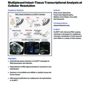 Multiplexed intact-tissue transcriptional analysis at cellular resolution_Sylwestrak_CellRes2016